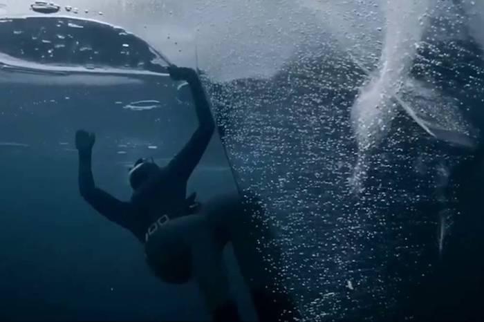 视频:北极冰层50米下的潜水者 创下世界纪录