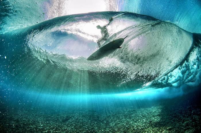 探索全球最顶级水下摄影师的超酷生活方式