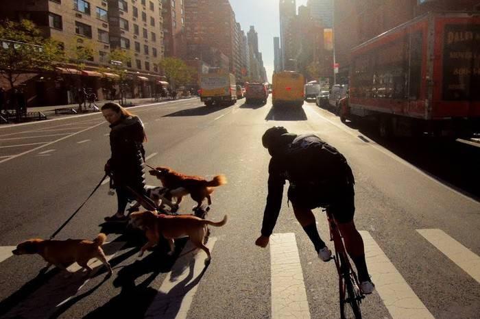 一镜到底骑行纽约,让自己看起来像阵风