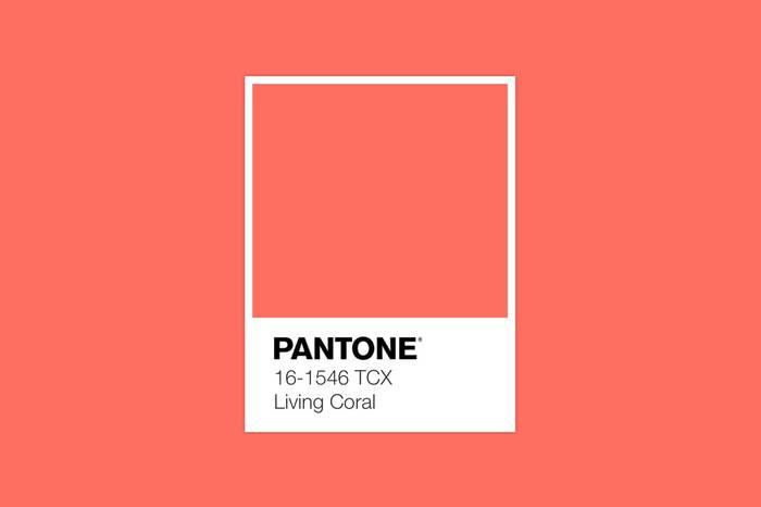 PANTONE公布2019年度代表色,活珊瑚橘色带来全新活力与生机