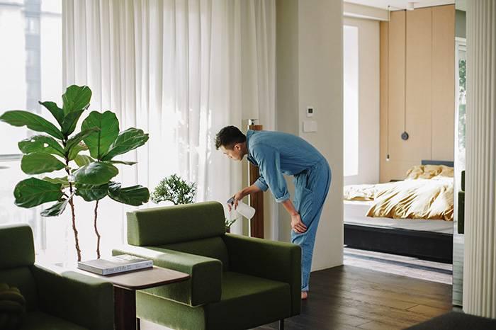 作家安东尼的上海新家,在简约美中营造温暖空间
