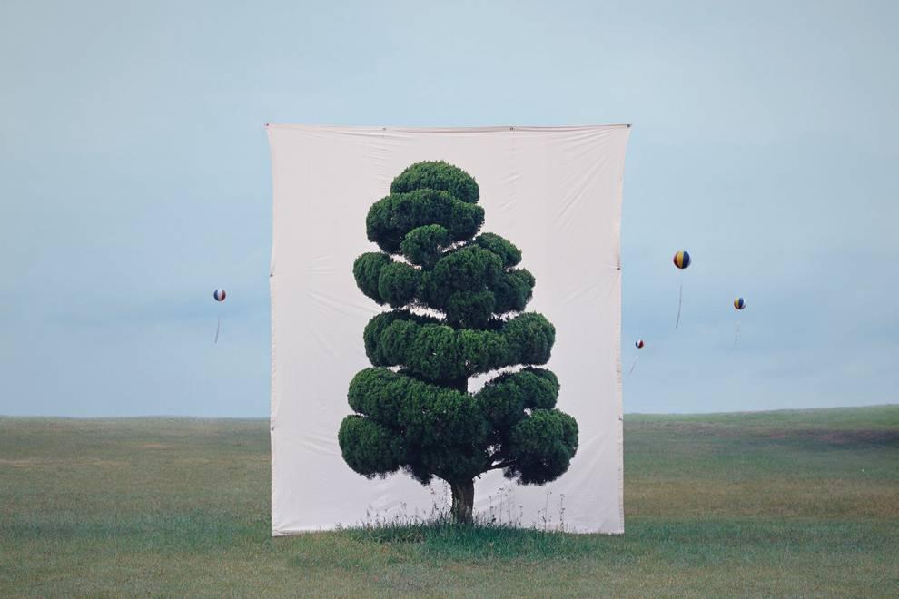 一棵棵孤单的树,是这位韩国艺术家心中珍宝一般的存在