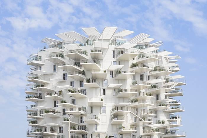 藤本壮介丨建筑是探索世界和人道的一种方式
